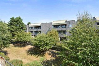 Photo 11: 214 8460 ACKROYD ROAD in Richmond: Brighouse Condo for sale : MLS®# R2302010