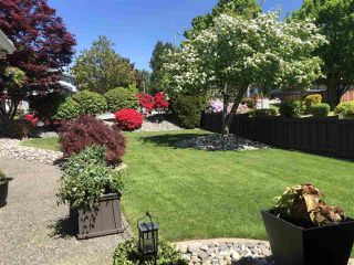 "Photo 8: 2666 PHILLIPS Avenue in Burnaby: Montecito House for sale in ""MONTECITO"" (Burnaby North)  : MLS®# R2420660"