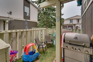 Photo 26: 302 544 BLACKTHORN Road NE in Calgary: Thorncliffe Row/Townhouse for sale : MLS®# A1025923