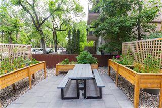 Photo 4: 3 338 River Avenue in Winnipeg: Osborne Village Condominium for sale (1B)  : MLS®# 202026499