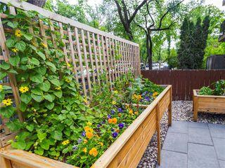 Photo 5: 3 338 River Avenue in Winnipeg: Osborne Village Condominium for sale (1B)  : MLS®# 202026499