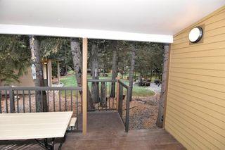 Photo 11: 4 200 4 Avenue SW: Sundre Detached for sale : MLS®# A1046448