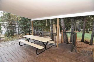 Photo 10: 4 200 4 Avenue SW: Sundre Detached for sale : MLS®# A1046448
