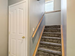 Photo 25: 9 Cambria Place: Strathmore Detached for sale : MLS®# A1051462