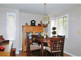 Photo 4: # 117 22515 116TH AV in Maple Ridge: East Central Condo for sale : MLS®# V1033272