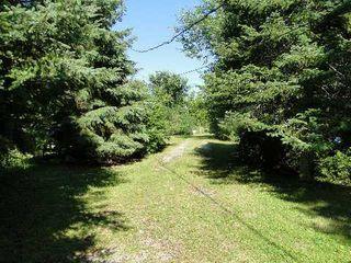 Photo 10: 30 Hargrave Road in Kawartha Lakes: Rural Eldon House (Bungalow) for sale : MLS®# X2979714