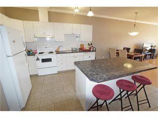 Photo 10: #303 1777 1 ST NE in Calgary: Tuxedo Park Condo for sale : MLS®# C4053000