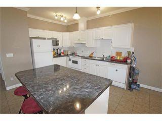 Photo 9: #303 1777 1 ST NE in Calgary: Tuxedo Park Condo for sale : MLS®# C4053000