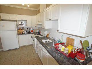 Photo 13: #303 1777 1 ST NE in Calgary: Tuxedo Park Condo for sale : MLS®# C4053000