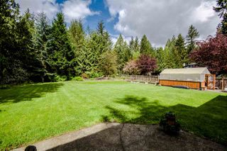 Photo 17: 5995 237A STREET in Langley: Salmon River House for sale : MLS®# R2058317