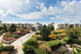 Photo 13: #301-15850 26th Avenue in Surrey: Grandview Surrey Condo for sale (South Surrey White Rock)  : MLS®# R2106306