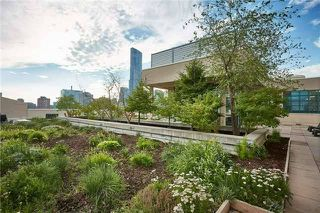 Photo 18: 155 Dalhousie St Unit #1039 in Toronto: Church-Yonge Corridor Condo for sale (Toronto C08)  : MLS®# C3692552