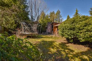 Photo 16: 33372 11TH AVENUE in Mission: Mission BC House for sale : MLS®# R2350644
