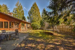 Photo 14: 33372 11TH AVENUE in Mission: Mission BC House for sale : MLS®# R2350644