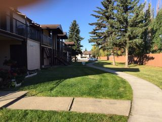 Photo 11: 2073 SADDLEBACK Road in Edmonton: Zone 16 Carriage for sale : MLS®# E4175502