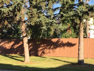 Photo 12: 2073 SADDLEBACK Road in Edmonton: Zone 16 Carriage for sale : MLS®# E4175502