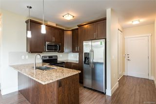 Photo 9: 308 982 McKenzie Ave in Saanich: SE Quadra Condo for sale (Saanich East)  : MLS®# 838589