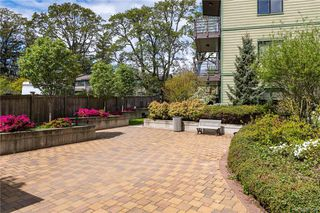 Photo 5: 308 982 McKenzie Ave in Saanich: SE Quadra Condo for sale (Saanich East)  : MLS®# 838589
