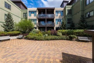 Photo 19: 308 982 McKenzie Ave in Saanich: SE Quadra Condo for sale (Saanich East)  : MLS®# 838589