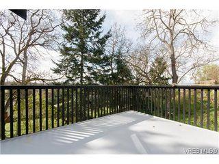 Photo 18: 979 Ridgeway St in VICTORIA: SE Swan Lake Single Family Detached for sale (Saanich East)  : MLS®# 636924