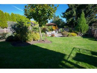 Photo 17: 1726 143B ST in Surrey: Sunnyside Park Surrey House for sale (South Surrey White Rock)  : MLS®# F1323431