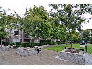 Photo 18: # 205 15988 26TH AV in Surrey: Grandview Surrey Condo for sale (South Surrey White Rock)  : MLS®# F1421734