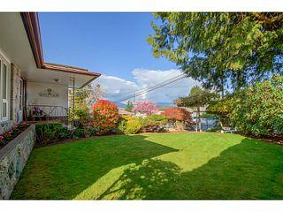 Photo 16: 4849 SMITH AV in Burnaby: Central Park BS House for sale (Burnaby South)  : MLS®# V1115588