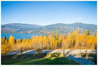 Photo 81: 5046 Sunset Drive: Eagle Bay House for sale (Shuswap Lake)  : MLS®# 10107837