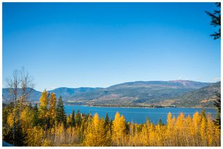 Photo 80: 5046 Sunset Drive: Eagle Bay House for sale (Shuswap Lake)  : MLS®# 10107837