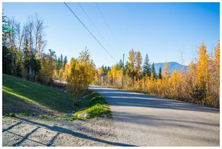 Photo 88: 5046 Sunset Drive: Eagle Bay House for sale (Shuswap Lake)  : MLS®# 10107837