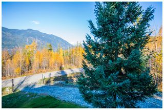 Photo 83: 5046 Sunset Drive: Eagle Bay House for sale (Shuswap Lake)  : MLS®# 10107837