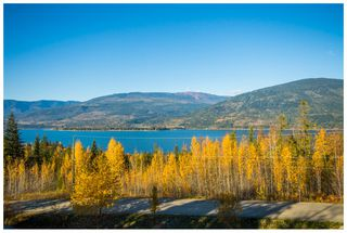 Photo 75: 5046 Sunset Drive: Eagle Bay House for sale (Shuswap Lake)  : MLS®# 10107837