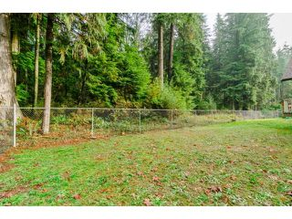 Photo 20: 12156 BELL STREET in Mission: Stave Falls House for sale : MLS®# R2013918