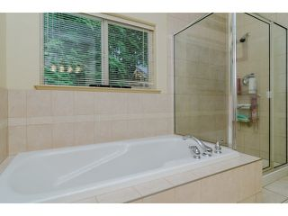 Photo 11: 12156 BELL STREET in Mission: Stave Falls House for sale : MLS®# R2013918
