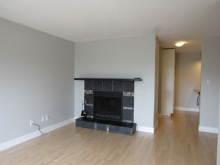 Photo 5: 20 Alpine Place in St. Albert: Condo for rent