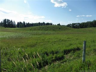 Photo 6: ON Township Road 422 in Rural Ponoka County: Land for sale : MLS®# CA0188090
