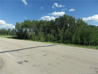 Photo 4: ON Township Road 422 in Rural Ponoka County: Land for sale : MLS®# CA0188090