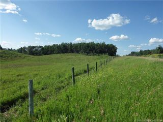 Photo 2: ON Township Road 422 in Rural Ponoka County: Land for sale : MLS®# CA0188090