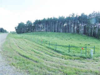 Photo 3: ON Township Road 422 in Rural Ponoka County: Land for sale : MLS®# CA0188090