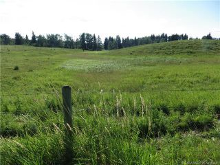 Photo 5: ON Township Road 422 in Rural Ponoka County: Land for sale : MLS®# CA0188090