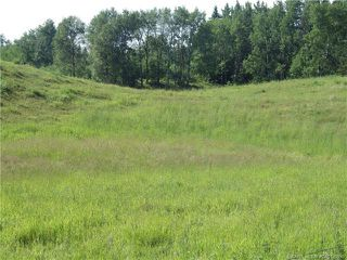 Photo 7: ON Township Road 422 in Rural Ponoka County: Land for sale : MLS®# CA0188090
