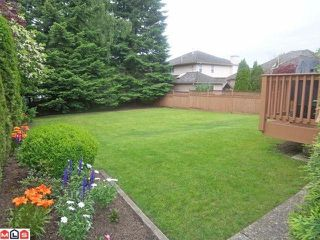"""Photo 8: 21649 45TH Avenue in Langley: Murrayville House for sale in """"Upper Murrayville"""" : MLS®# F1216788"""