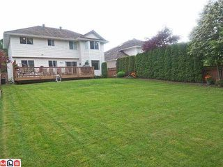 """Photo 9: 21649 45TH Avenue in Langley: Murrayville House for sale in """"Upper Murrayville"""" : MLS®# F1216788"""