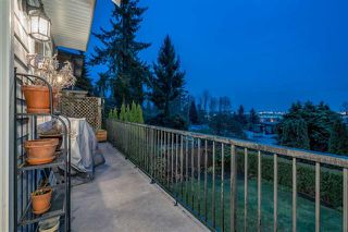 Photo 10: 1025 W Keith Road in North Vancouver: Pemberton Heights House for sale : MLS®# R2282286