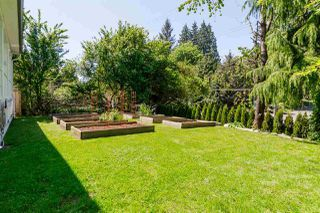 Photo 17: 20010 50 AVENUE in Langley: Langley City House for sale : MLS®# R2278939
