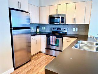 Photo 3: 605 10136 104 Street in Edmonton: Zone 12 Condo for sale : MLS®# E4192924