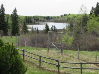 Photo 5: 351035A Range Road 61: Rural Clearwater County Detached for sale : MLS®# C4297657