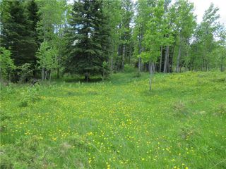 Photo 43: 351035A Range Road 61: Rural Clearwater County Detached for sale : MLS®# C4297657