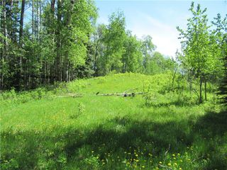 Photo 33: 351035A Range Road 61: Rural Clearwater County Detached for sale : MLS®# C4297657