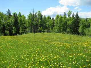 Photo 41: 351035A Range Road 61: Rural Clearwater County Detached for sale : MLS®# C4297657